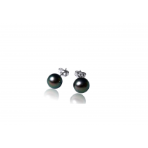 925 Silver 6mm Dyed Black Fresh Water Pearl Stud Earrings